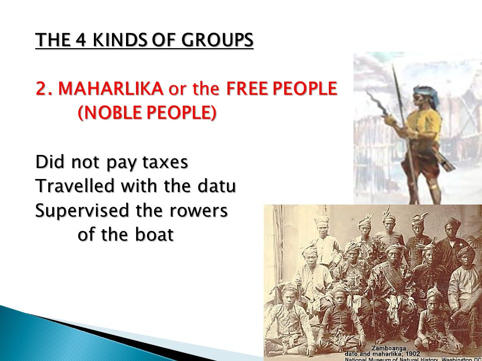 THE 4 KINDS OF GROUPS 2. MAHARLIKA or the FREE PEOPLE. (NOBLE PEOPLE) Did not pay taxes. Travelled with the datu.
