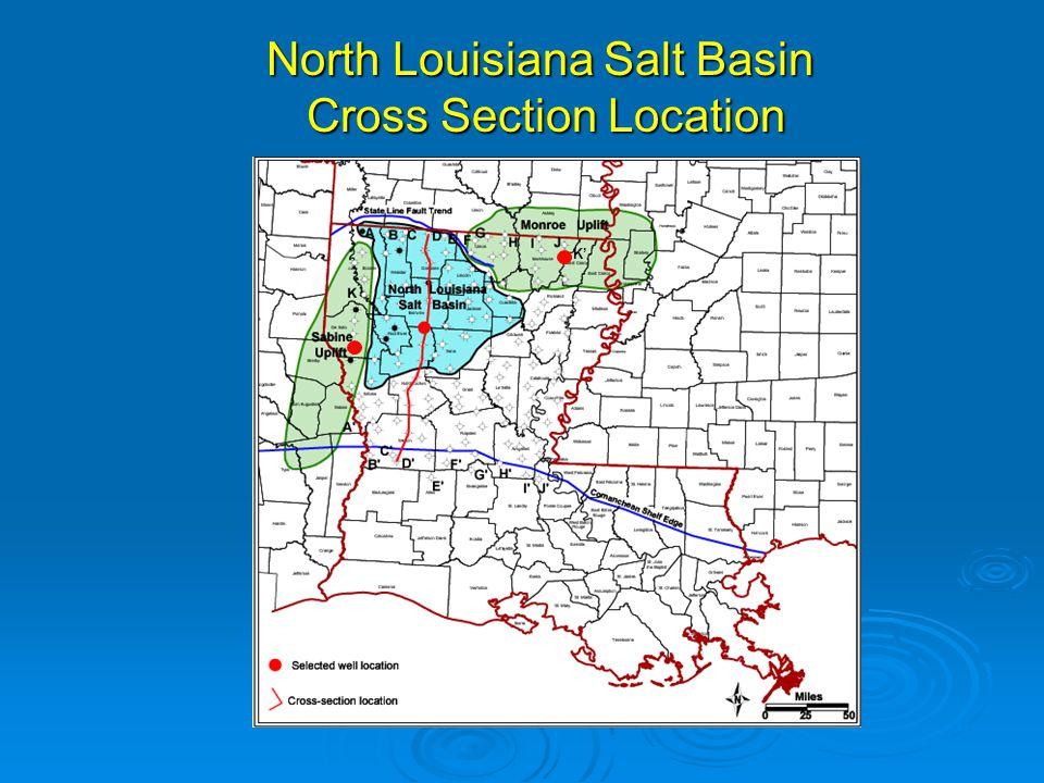 North Louisiana Salt Basin Cross Section Location