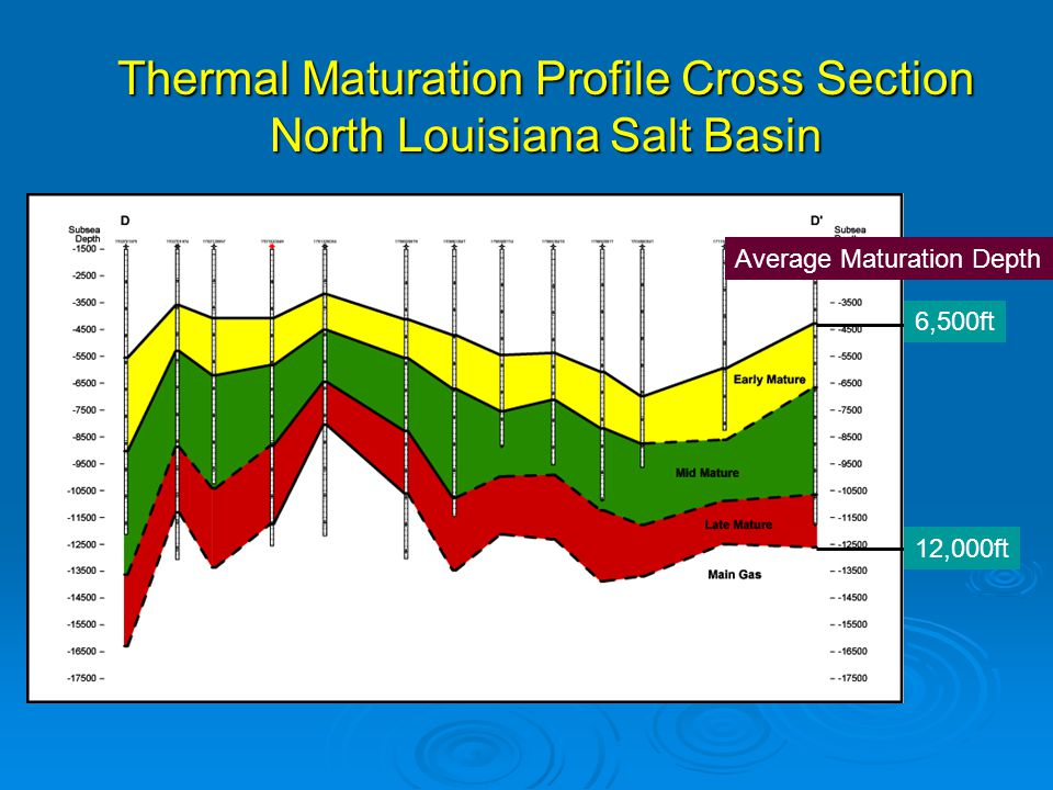 Thermal Maturation Profile Cross Section North Louisiana Salt Basin