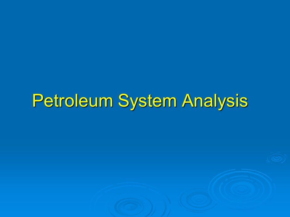 Petroleum System Analysis