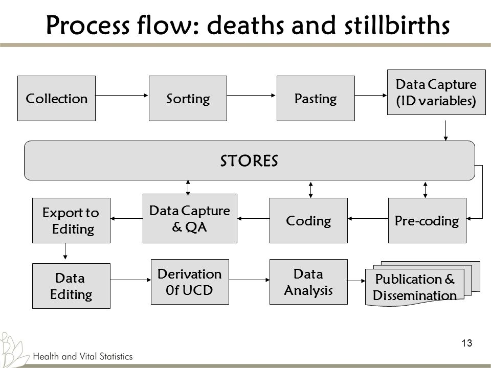 Process flow: deaths and stillbirths