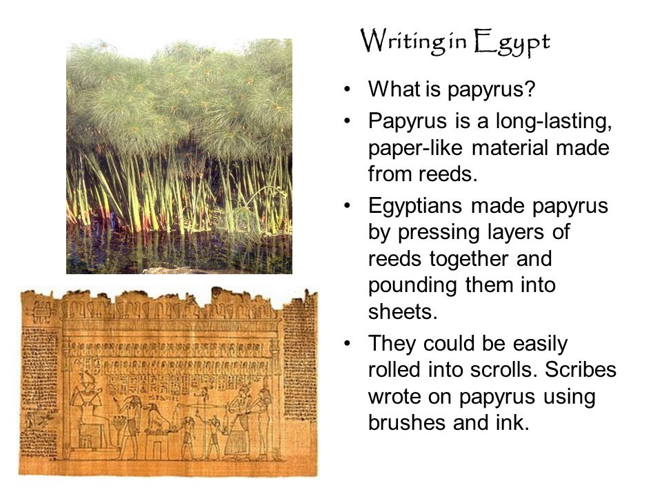 Writing in Egypt What is papyrus