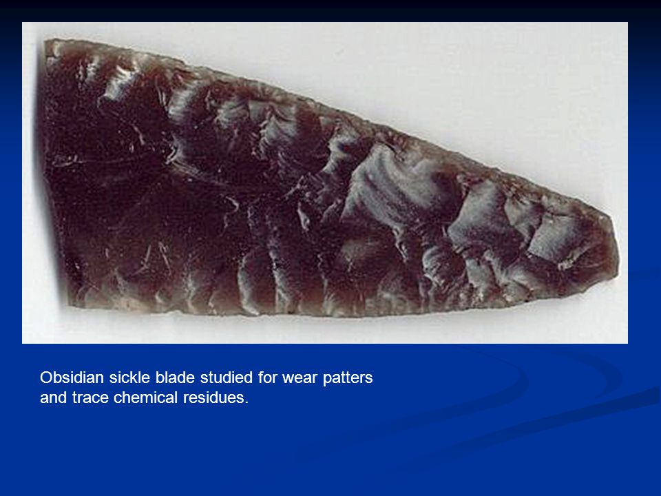 Obsidian sickle blade studied for wear patters and trace chemical residues.