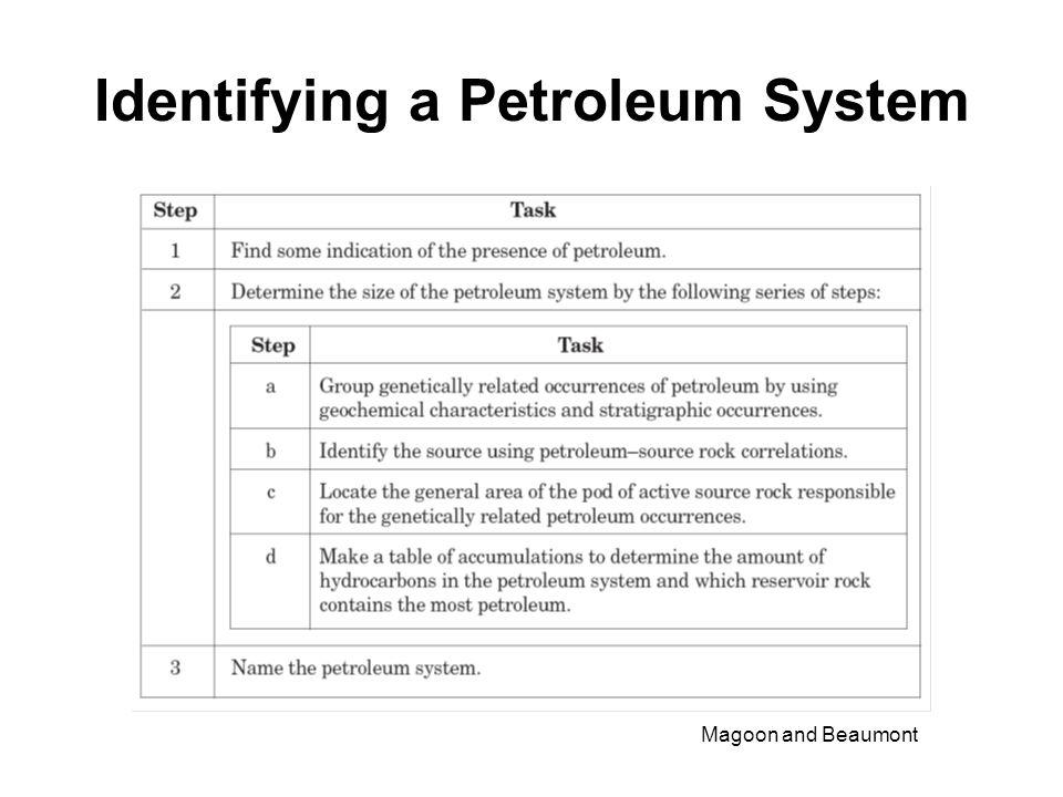 Identifying a Petroleum System