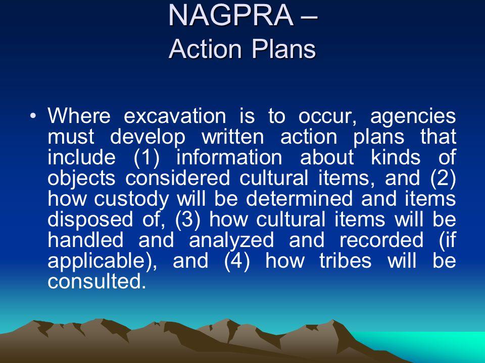 NAGPRA – Action Plans