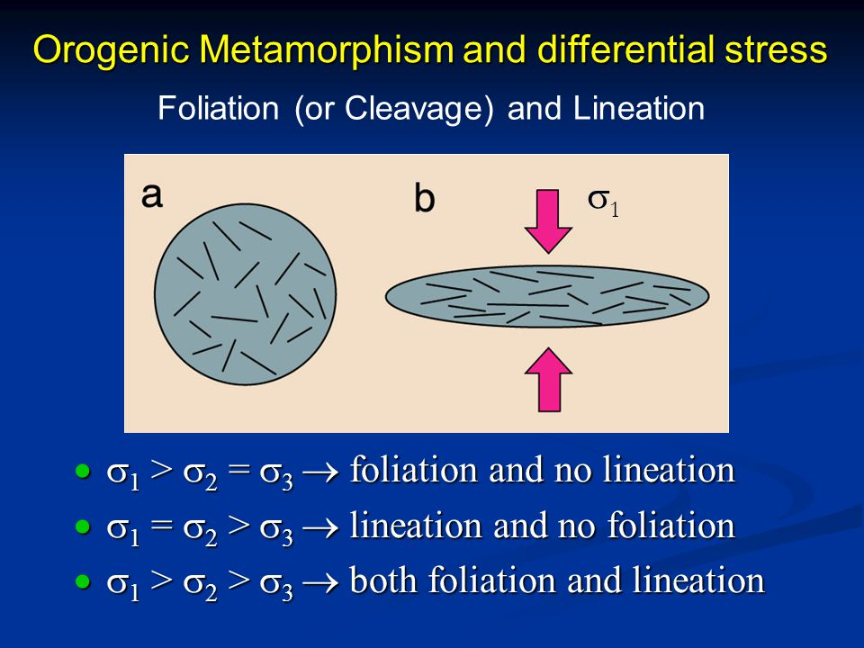 Orogenic Metamorphism and differential stress