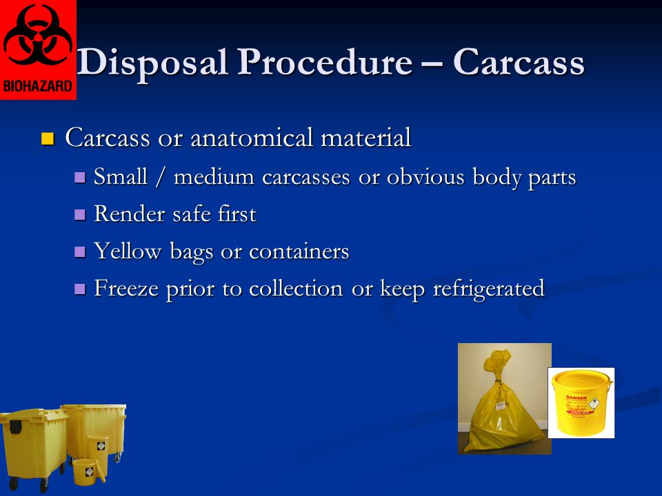 Disposal Procedure – Carcass