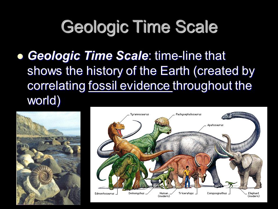 Geologic Time Scale Geologic Time Scale: time-line that shows the history of the Earth (created by correlating fossil evidence throughout the world)