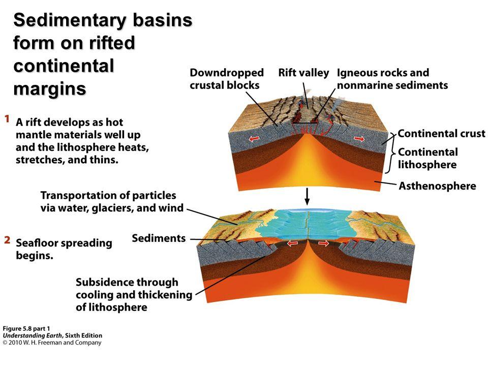 Sedimentary basins form on rifted continental margins
