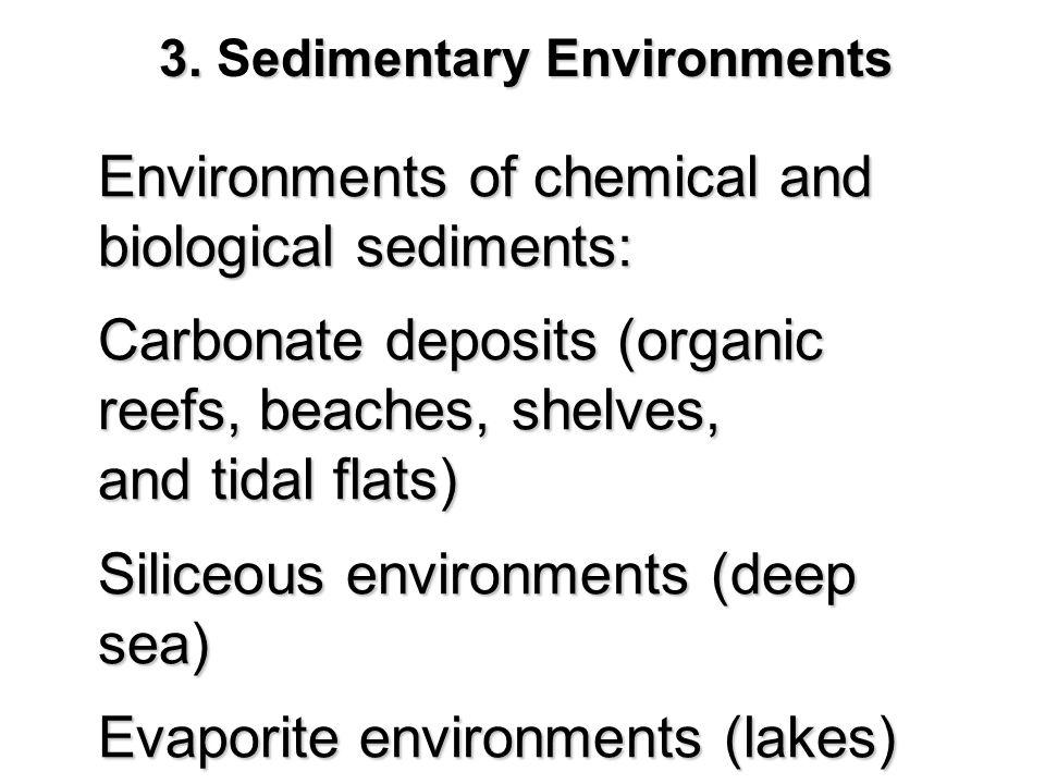 3. Sedimentary Environments