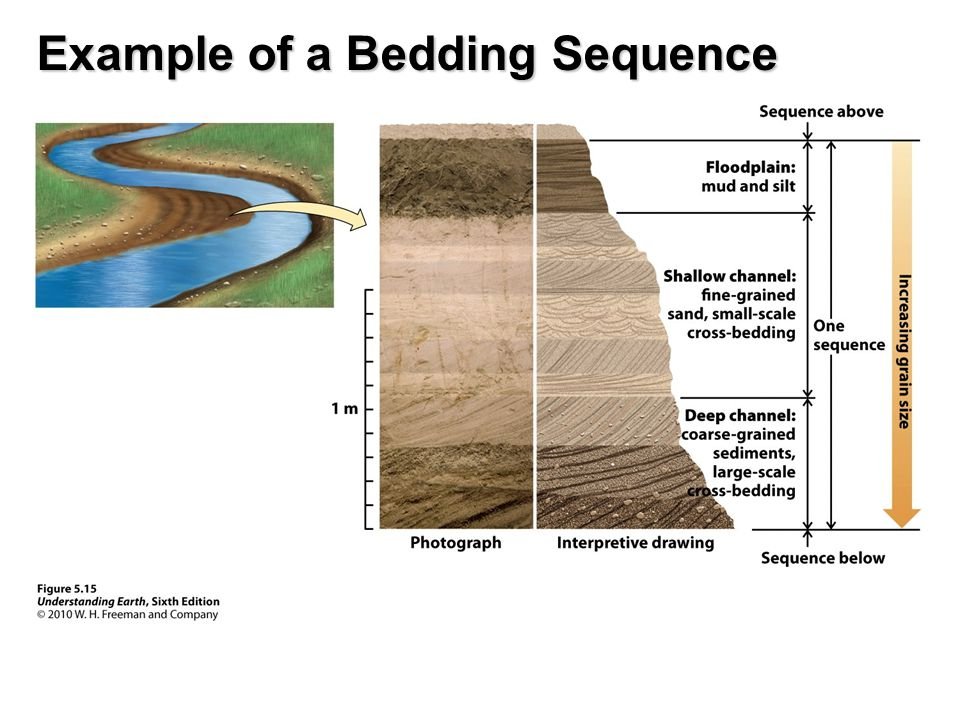 Example of a Bedding Sequence