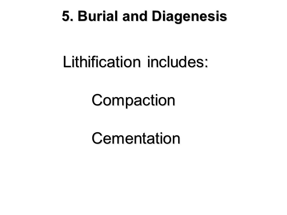 Lithification includes: Compaction Cementation