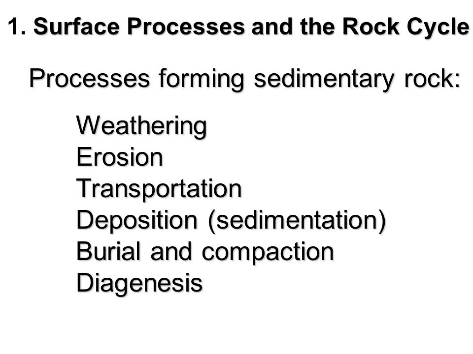 Surface Processes and the Rock Cycle