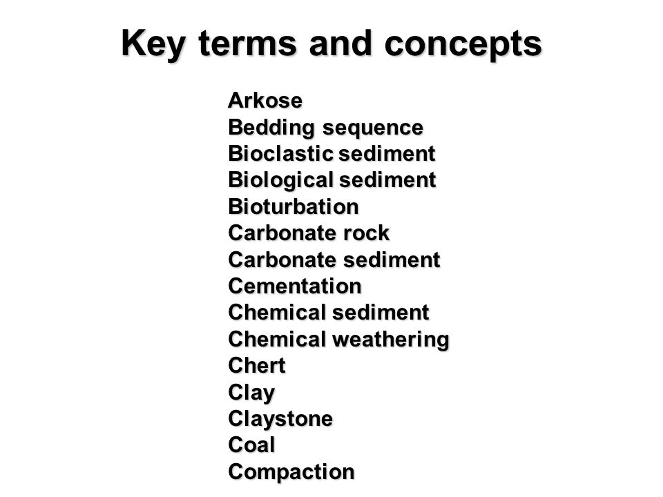 Key terms and concepts Bedding sequence Bioclastic sediment