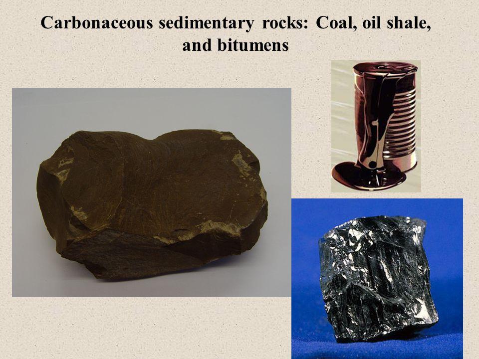 Carbonaceous sedimentary rocks: Coal, oil shale, and bitumens