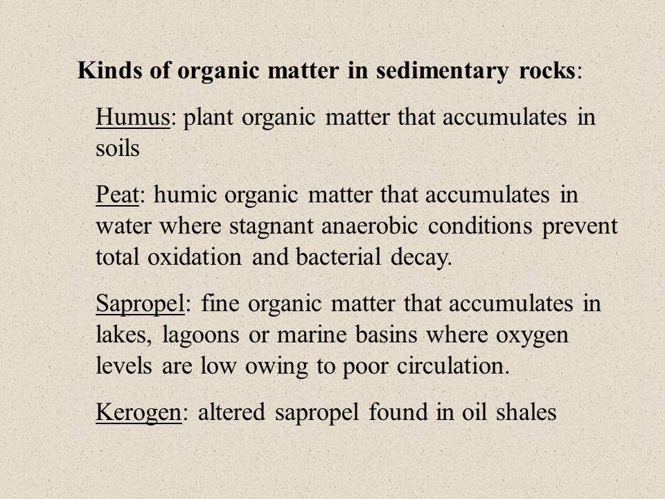 Kinds of organic matter in sedimentary rocks: