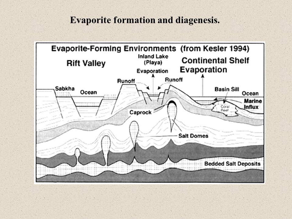 Evaporite formation and diagenesis.