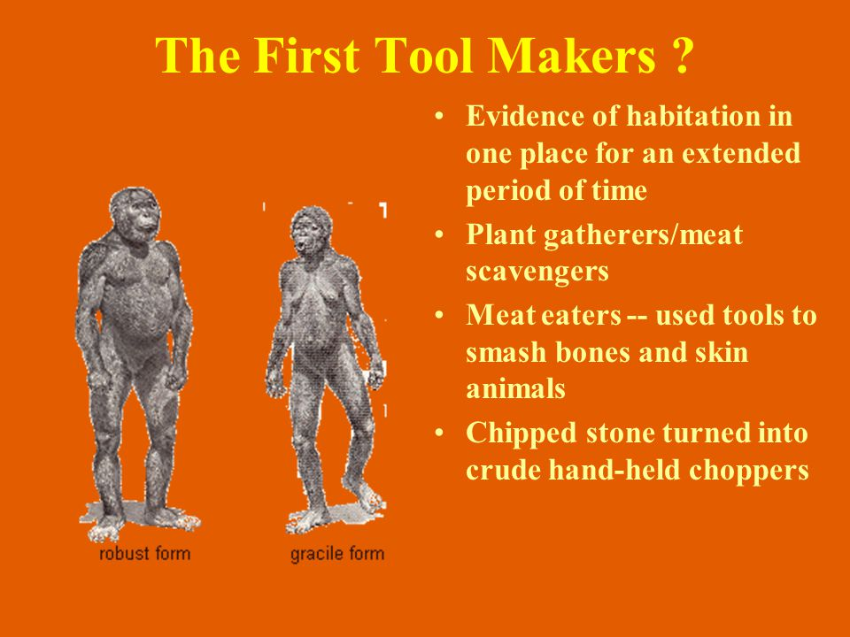 The First Tool Makers Evidence of habitation in one place for an extended period of time. Plant gatherers/meat scavengers.