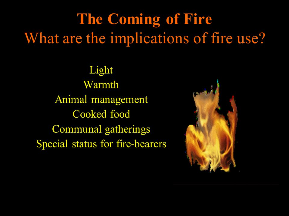 The Coming of Fire What are the implications of fire use