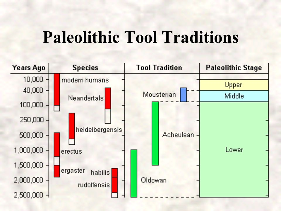Paleolithic Tool Traditions