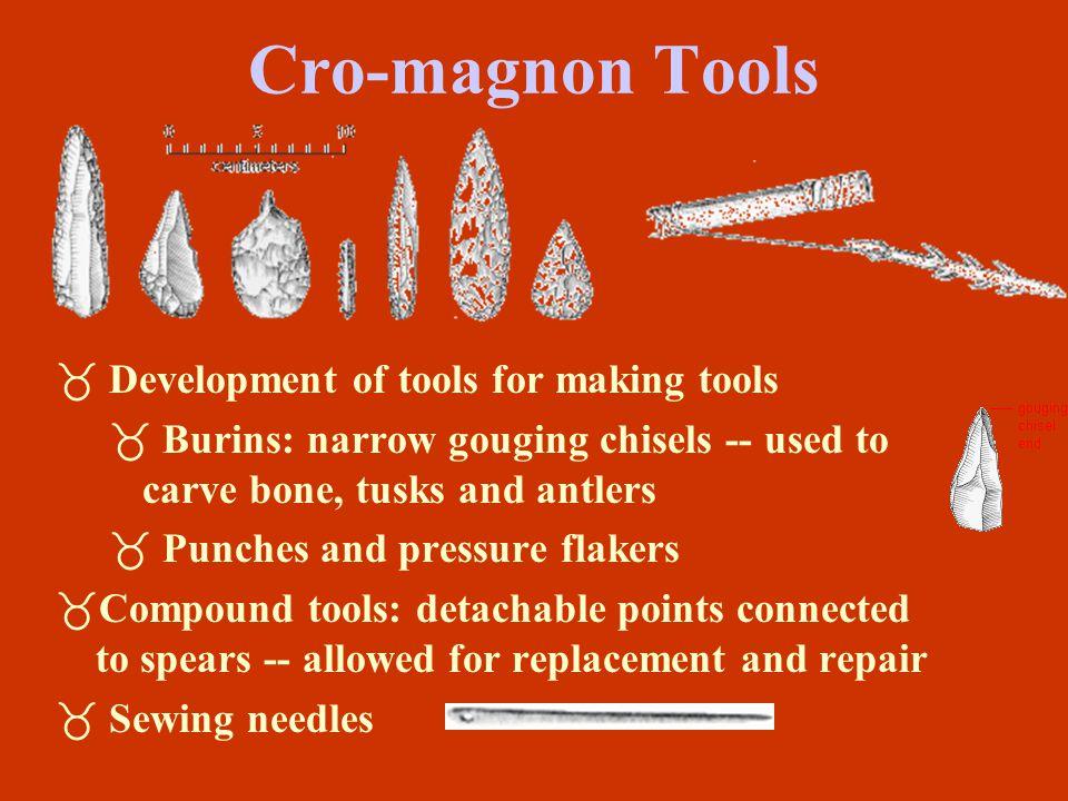 Cro-magnon Tools Development of tools for making tools