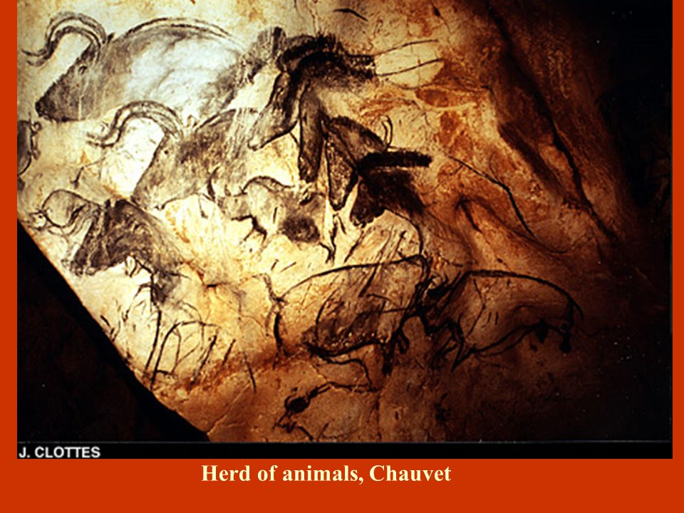Herd of animals, Chauvet