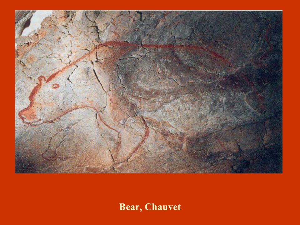 Bear, Chauvet