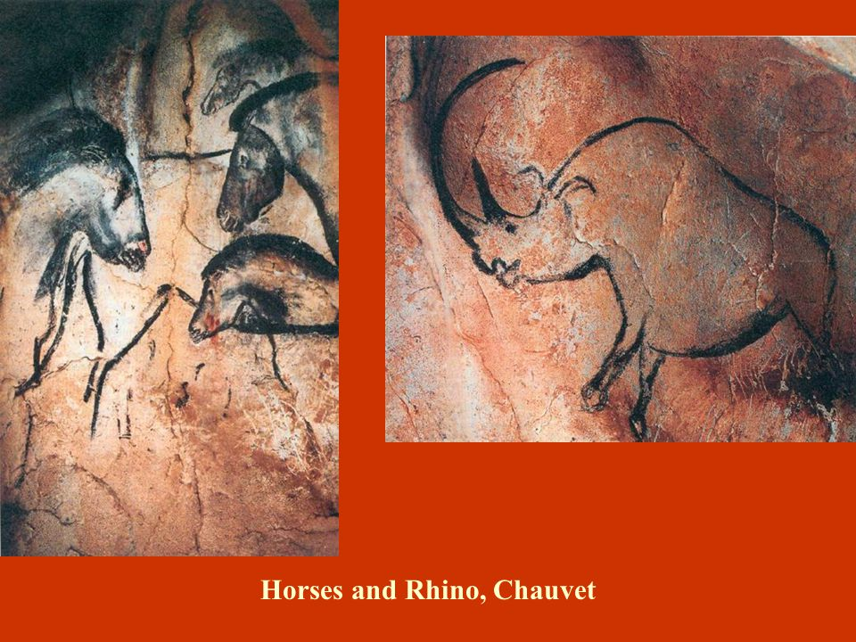 Horses and Rhino, Chauvet