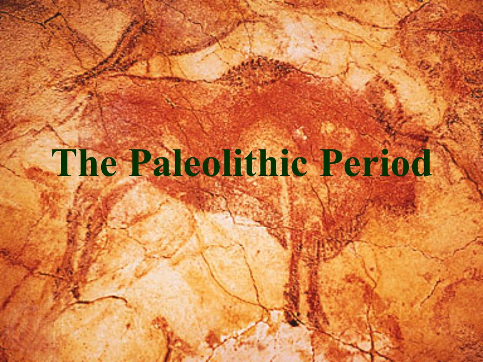 The Paleolithic Period