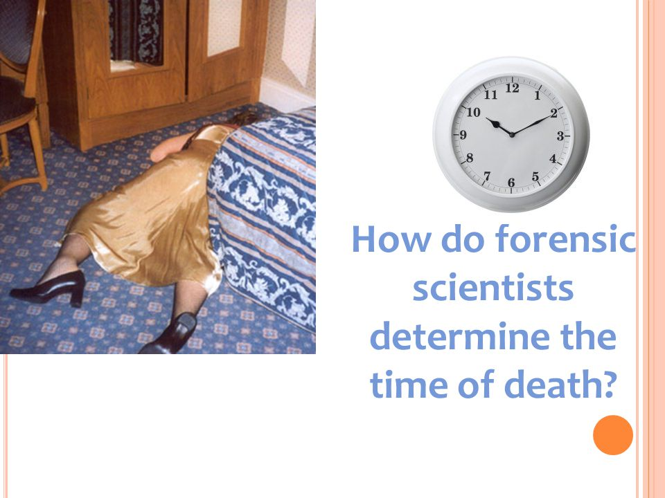 How do forensic scientists determine the time of death