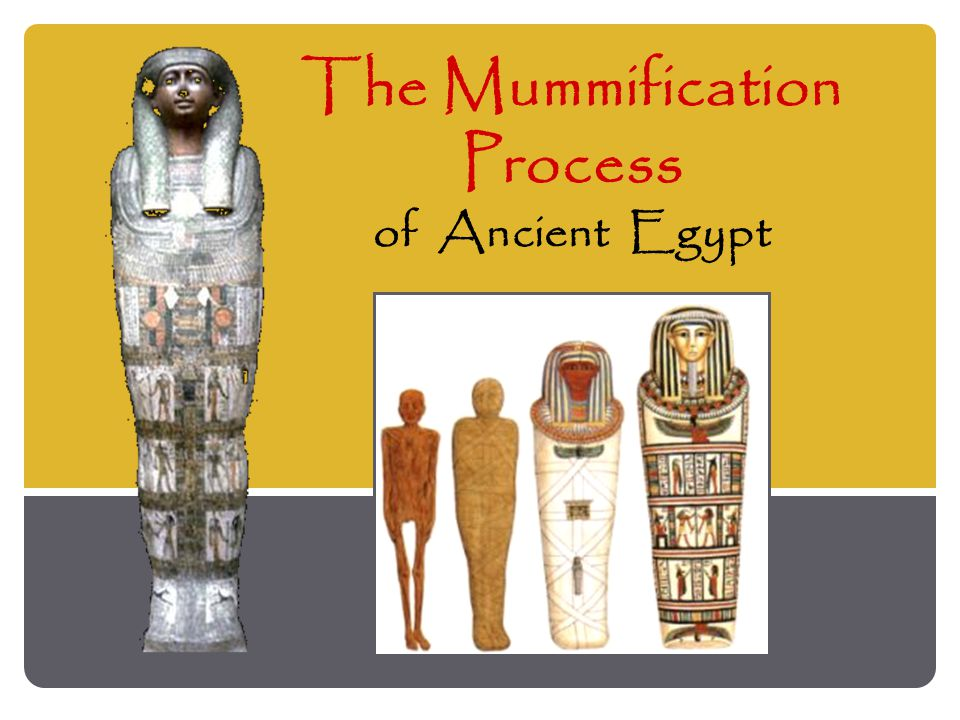 The Mummification Process of Ancient Egypt
