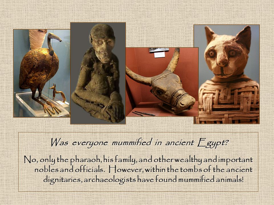 Was everyone mummified in ancient Egypt