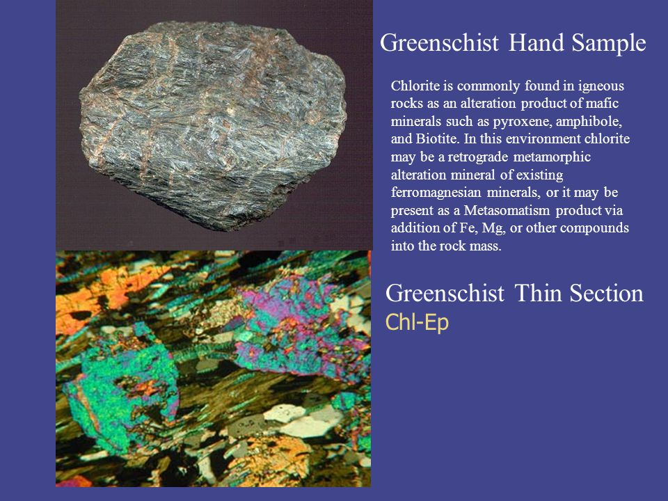 Greenschist Hand Sample