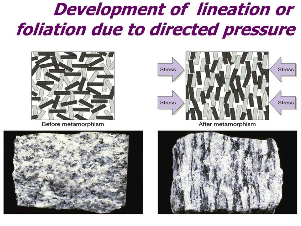 Development of lineation or foliation due to directed pressure