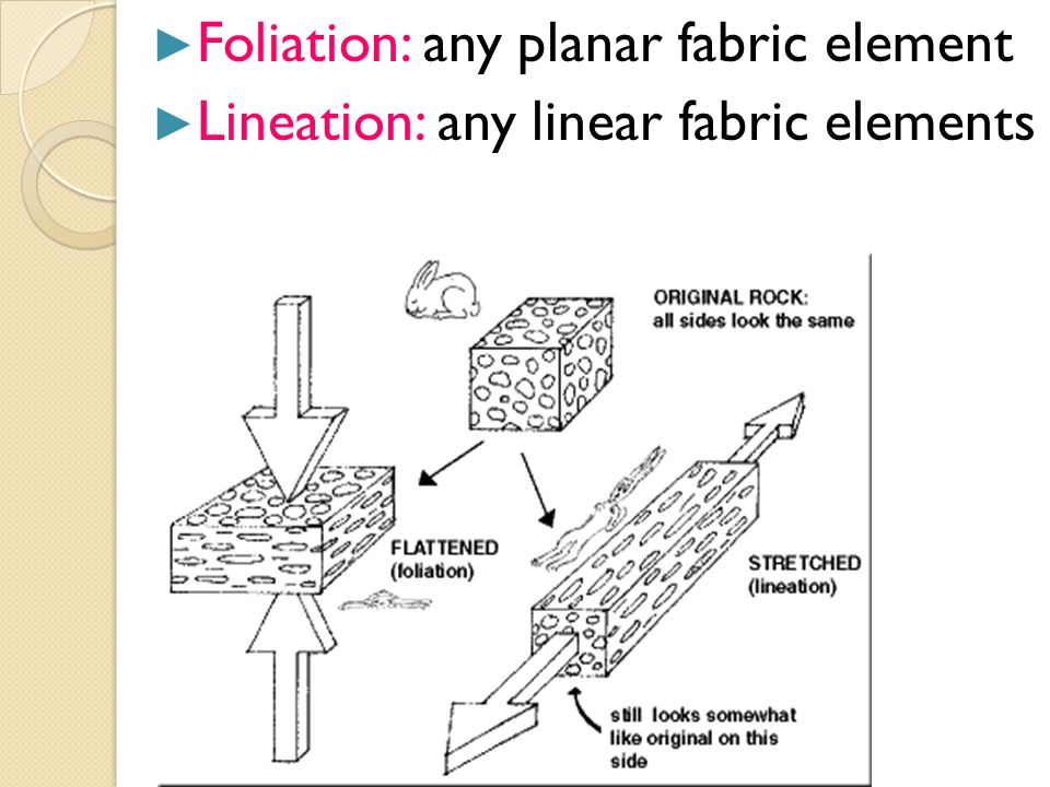 Foliation: any planar fabric element