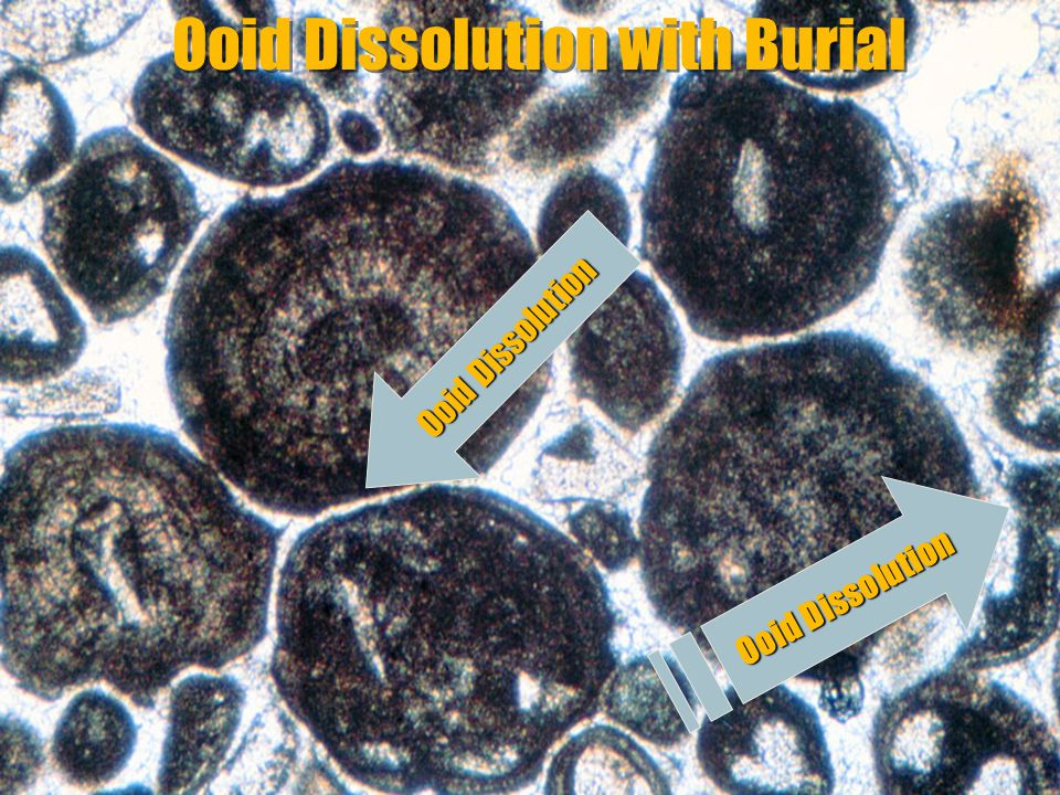 Ooid Dissolution with Burial