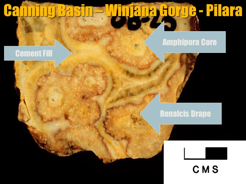 Canning Basin – Winjana Gorge - Pilara Canning Basin – Winjana Gorge