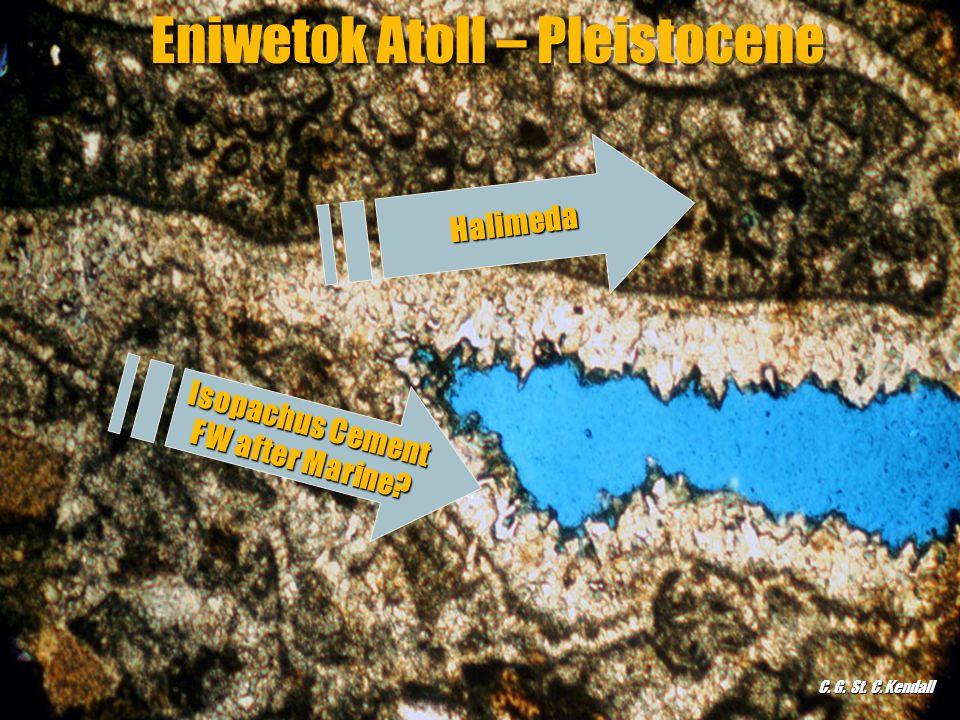 Eniwetok Atoll – Pleistocene