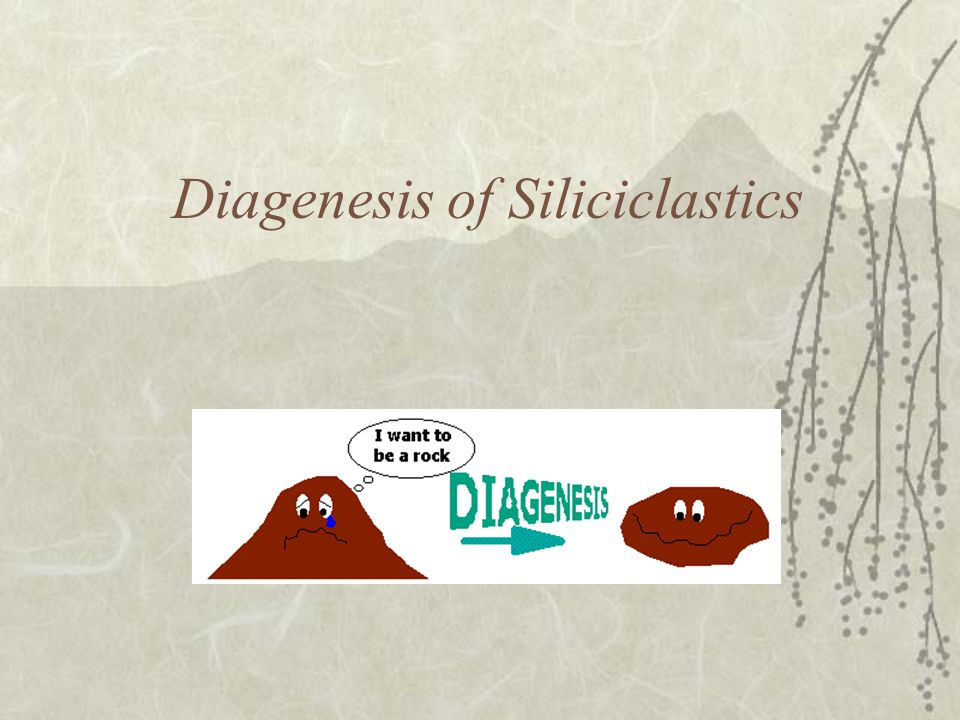 Diagenesis of Siliciclastics