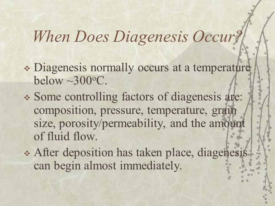 When Does Diagenesis Occur