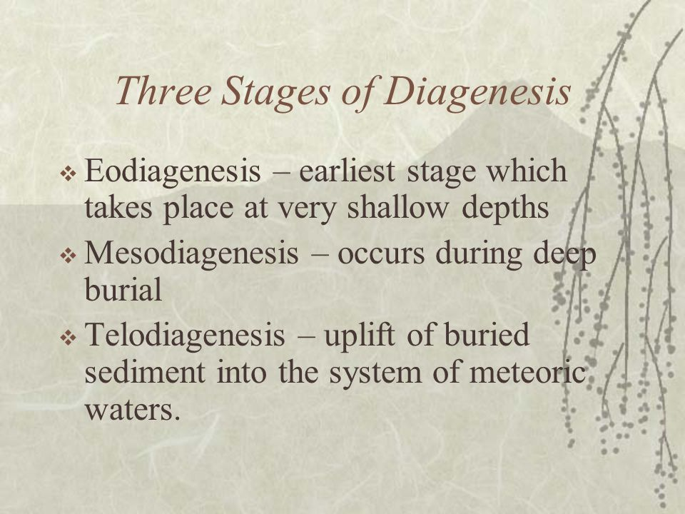 Three Stages of Diagenesis