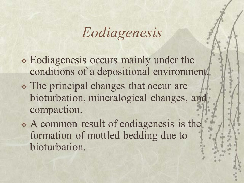Eodiagenesis Eodiagenesis occurs mainly under the conditions of a depositional environment.
