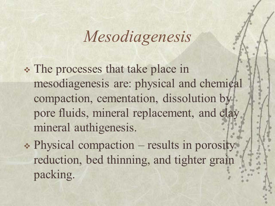 Mesodiagenesis