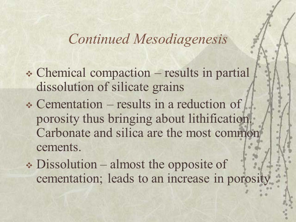 Continued Mesodiagenesis
