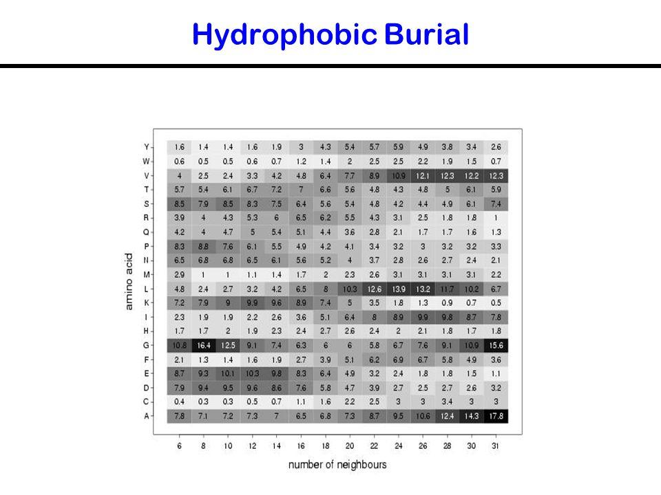 Hydrophobic Burial