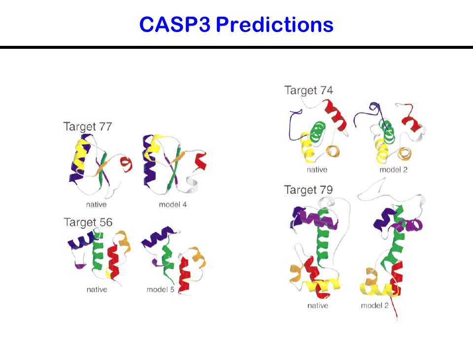 CASP3 Predictions