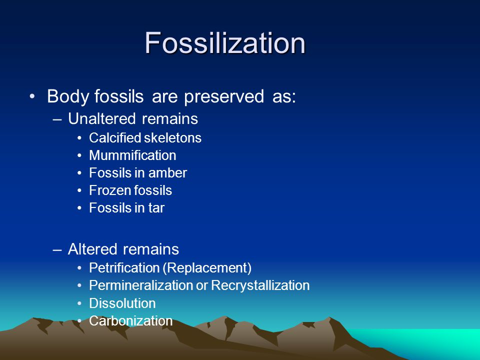 Fossilization Body fossils are preserved as: Unaltered remains