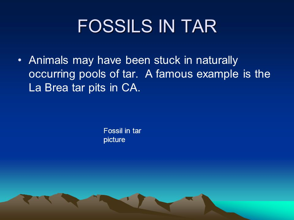 FOSSILS IN TAR Animals may have been stuck in naturally occurring pools of tar. A famous example is the La Brea tar pits in CA.