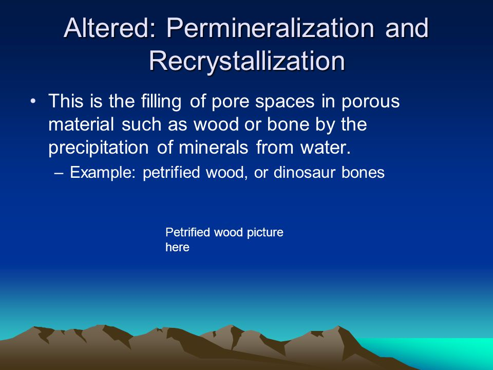Altered: Permineralization and Recrystallization