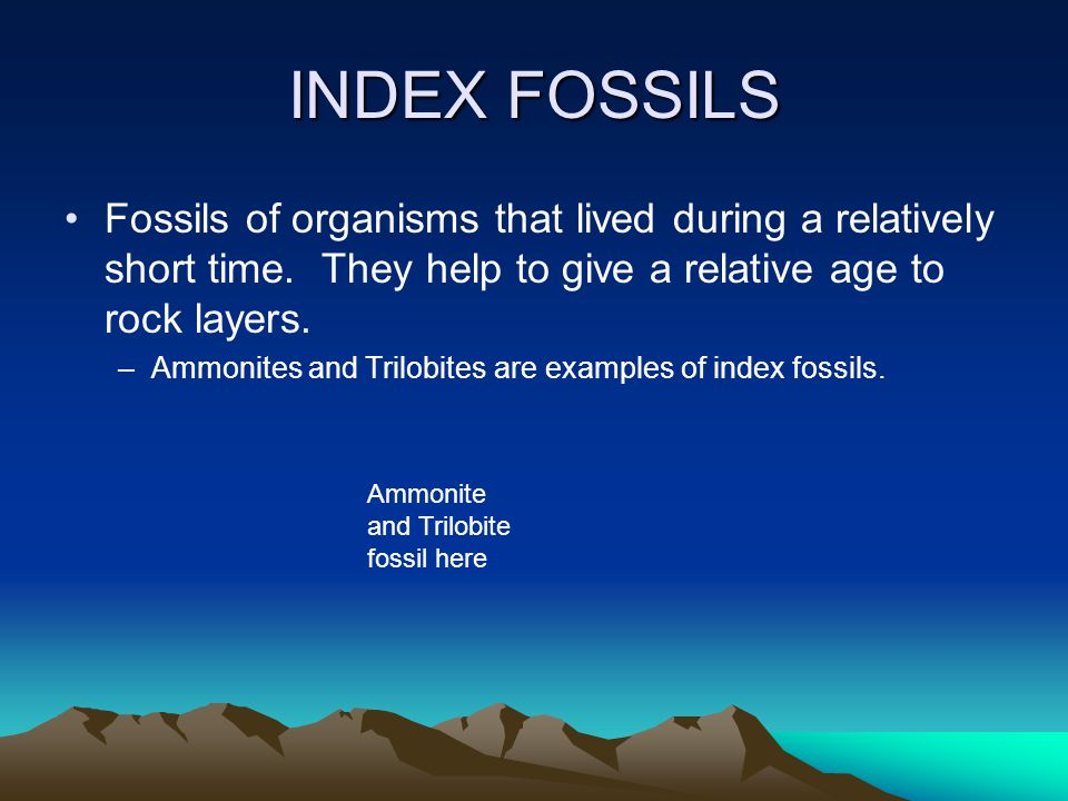 INDEX FOSSILS Fossils of organisms that lived during a relatively short time. They help to give a relative age to rock layers.